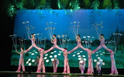 Cirque national de Hong Kong [08 Dec 2016]
