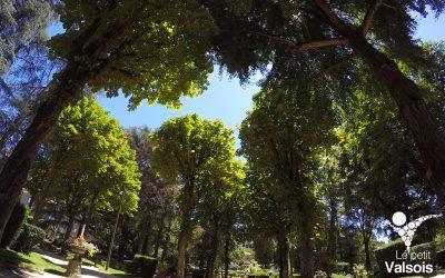 Reconnaissance de l'intérêt public des eaux de Vals-les-Bains